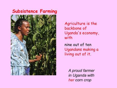 Agriculture is the backbone of Uganda's economy, with nine out of ten Ugandans making a living out of it. Subsistence Farming A proud farmer in Uganda.