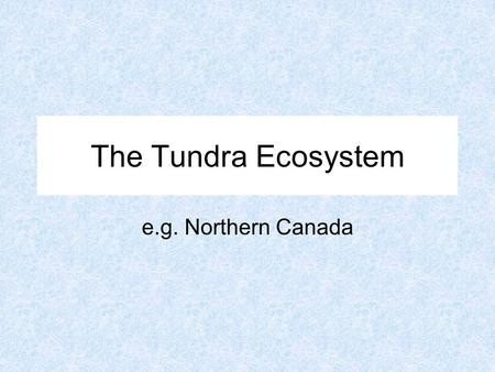 The Tundra Ecosystem e.g. Northern Canada. Arviat Location and Distribution of the Tundra Biome.