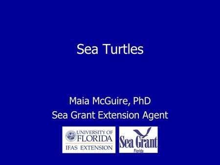 Sea Turtles Maia McGuire, PhD Sea Grant Extension Agent.