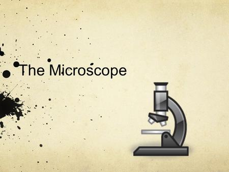 The Microscope. History of the Microscope Magnification (making things appear bigger) has been used for thousands of years. From the time of the Egyptians.