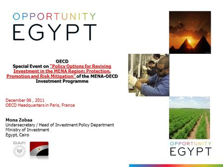 "OECD Special Event on of the MENA-OECD Investment Programme OECD Special Event on ""Policy Options for Reviving Investment in the MENA Region: Protection,"