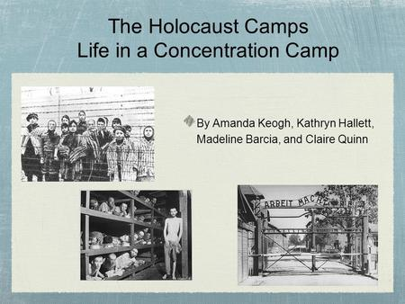 The Holocaust Camps Life in a Concentration Camp