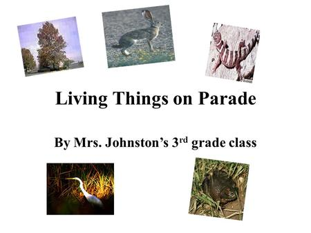 Living Things on Parade By Mrs. Johnston's 3rd grade class