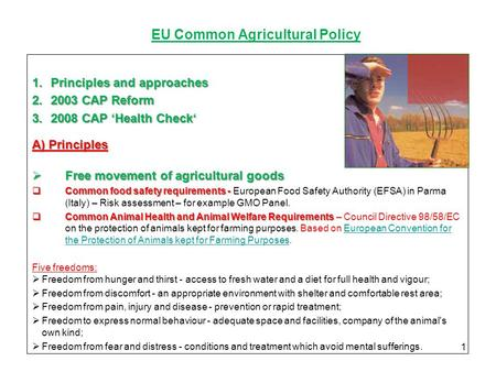 EU Common Agricultural Policy 1.Principles and approaches 2.2003 CAP Reform 3.2008 CAP 'Health Check' А) Principles  Free movement of agricultural goods.