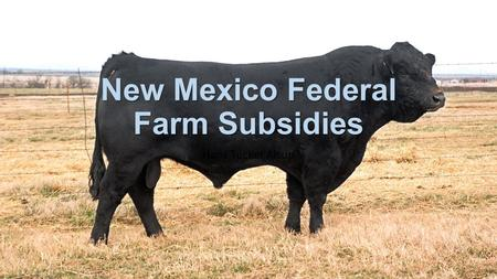 New Mexico Federal Farm Subsidies Hans Tucker Alsup.
