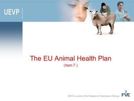 UEVP is a section of the Federation of Veterinarians of Europe The EU Animal Health Plan (Item 7.)