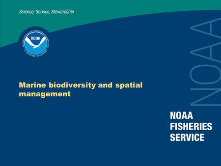 Marine biodiversity and spatial management. Setting the stage Conserving biodiversity → sustainable provision of present and future ecosystem services.