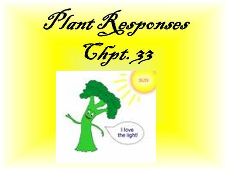 Plant Responses Chpt. 33. Stimulus and Response Stimulus: is anything that causes a reaction in an organism, or in any of its parts. Animal stimuli: -