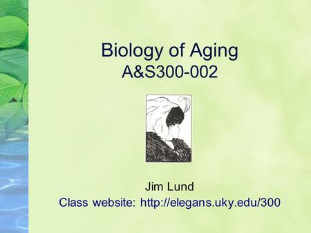 Biology of Aging A&S300-002 Jim Lund Class website: