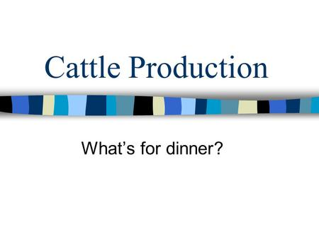 Cattle Production What's for dinner?. Fun Facts 7.1 Billion beef servings in restaurants. –10 % increase since 1990 5.5 Billion burgers sold in restaurants.