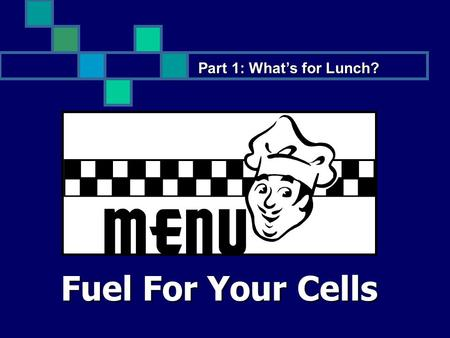 Fuel For Your Cells Part 1: What's for Lunch?. Objectives: Students Will: Understand how the digestive system works. Understand how the digestive system.