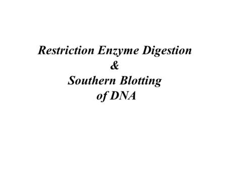 Restriction Enzyme Digestion & Southern Blotting of DNA
