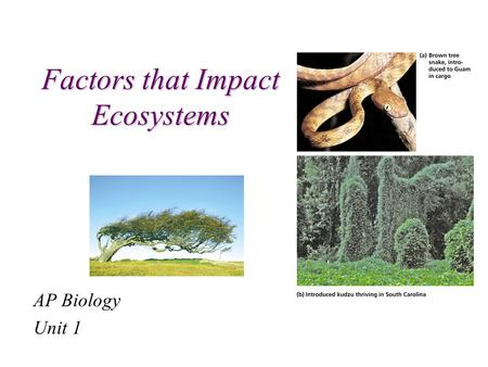 Factors that Impact Ecosystems AP Biology Unit 1.