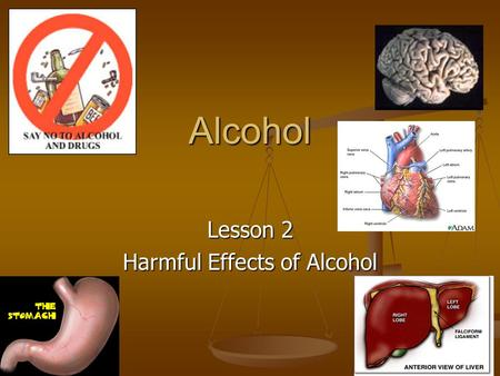 Alcohol Lesson 2 Harmful Effects of Alcohol. Short Term effects of drinking Brain: Effects are almost immediate, slows the CNS, Decision making is badly.