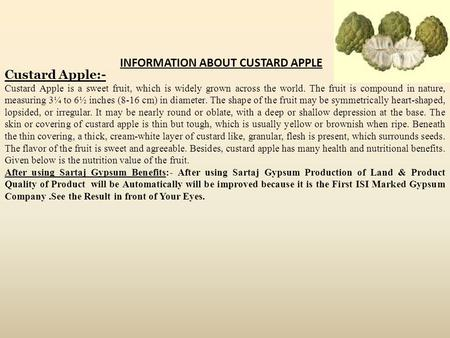 Custard Apple:- Custard Apple is a sweet fruit, which is widely grown across the world. The fruit is compound in nature, measuring 3¼ to 6½ inches (8-16.