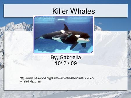 Killer Whales By, Gabriella 10/ 2 / 09  whale/index.htm.