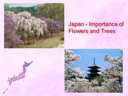 Japan - Importance of Flowers and Trees