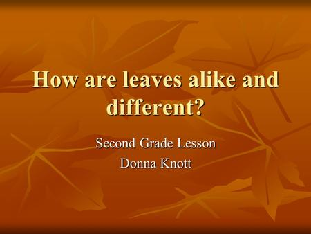 How are leaves alike and different?