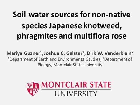 Soil water sources for non-native species Japanese knotweed, phragmites and multiflora rose Mariya Guzner 1, Joshua C. Galster 1, Dirk W. Vanderklein 2.