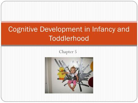 Chapter 5 Cognitive Development in Infancy and Toddlerhood.