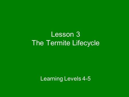 Lesson 3 The Termite Lifecycle Learning Levels 4-5.
