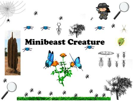 Minibeast Creature. This is a garden. Gardens have lots of animals like snails, ants, bees, and dragonflies. They are all minibeasts. Chapter 1 Minibeasts.