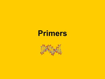Primers. What is a primer? Primers are oligonucleotides, small pieces of RNA or DNA up to 30 base pairs long (a bigger piece is known as a polynucleotide)