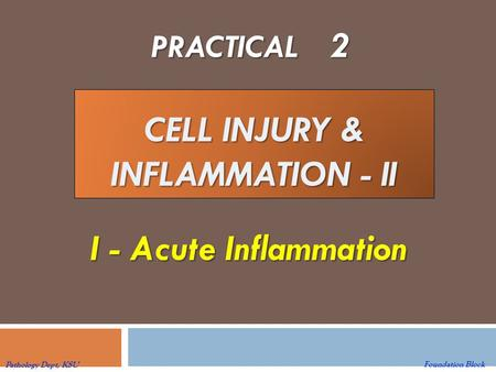 CELL INJURY & INFLAMMATION - II PRACTICAL 2 I - Acute Inflammation I - Acute Inflammation Foundation Block Pathology Dept, KSU.