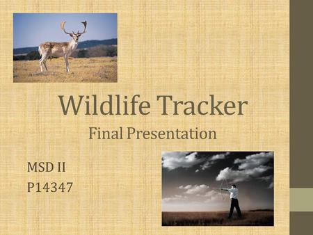 Wildlife Tracker MSD II P14347 Final Presentation.