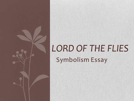 Lord of the flies human allegory essay