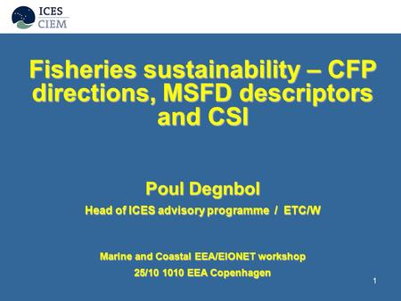1 Fisheries sustainability – CFP directions, MSFD descriptors and CSI Poul Degnbol Head of ICES advisory programme / ETC/W Marine and Coastal EEA/EIONET.