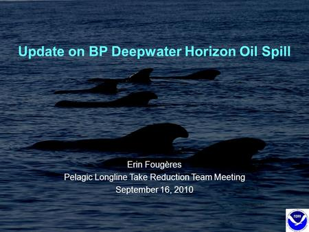 Update on BP Deepwater Horizon Oil Spill Erin Fougères Pelagic Longline Take Reduction Team Meeting September 16, 2010.