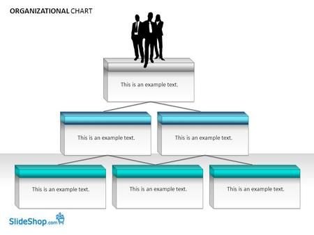 ORGANIZATIONAL CHART This is an example text.. ORGANIZATIONAL CHART This is an example text.