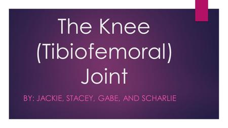 The Knee (Tibiofemoral) Joint BY: JACKIE, STACEY, GABE, AND SCHARLIE.