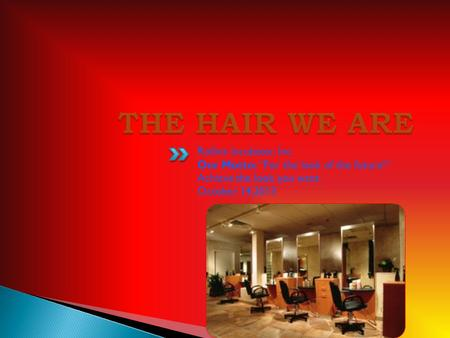 THE HAIR WE ARE Rollins Incubator, Inc.