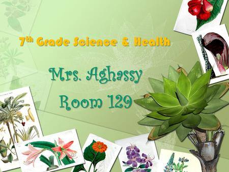 7 th Grade Science & Health Mrs. Aghassy Room 129.