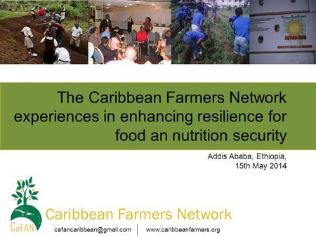 Caribbean Farmers Network The Caribbean Farmers Network experiences in enhancing resilience for food an.