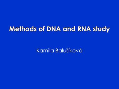 Kamila Balušíková.  DNA – sequence of genes, repetitive sequence of noncoding regions  RNA  Proteins gene expression.