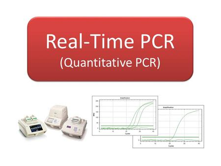 Real-Time PCR (Quantitative PCR)