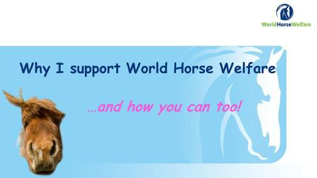 Why I support World Horse Welfare …and how you can too!