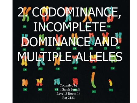 2. CODOMINANCE, INCOMPLETE DOMINANCE AND MULTIPLE ALLELES Compiled by Siti Sarah Jumali Level 3 Room 14 Ext 2123.