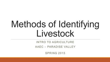 Methods of Identifying Livestock INTRO TO AGRICULTURE AAEC – PARADISE VALLEY SPRING 2015.