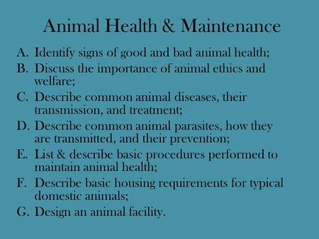 Animal Health & Maintenance