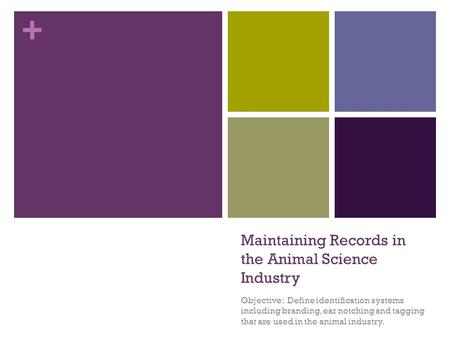 + Maintaining Records in the Animal Science Industry Objective: Define identification systems including branding, ear notching and tagging that are used.