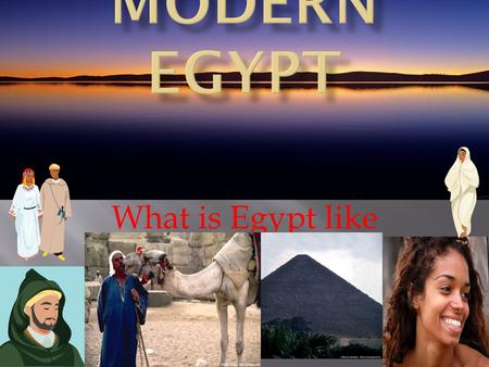 What is Egypt like today?  1. Oasis – A fertile water area in a desert.  2. Aswan Dam-A man made barrier in the Nile river that holds back water.