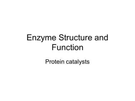 Enzyme Structure and Function Protein catalysts. Enzymes are Catalysts This means that enzymes help speed up chemical reactions. How? –Enzymes lower the.