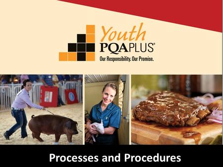 Processes and Procedures. Topics Youth PQA Plus ® –Changes Trainer, Advisor and Youth Requirements Training Materials www.pork.org.