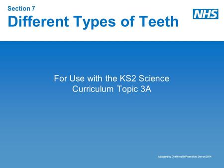 Section 7 Different Types of Teeth For Use with the KS2 Science Curriculum Topic 3A Adapted by Oral Health Promotion, Devon 2014.