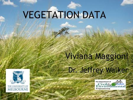 VEGETATION DATA Viviana Maggioni Dr. Jeffrey Walker.