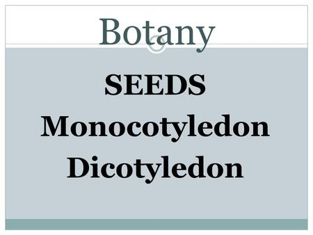 Botany SEEDS Monocotyledon Dicotyledon. SOL 4.4 Objectives: students will be able to investigate seeds, their parts, and how they grow into plants. Objective.